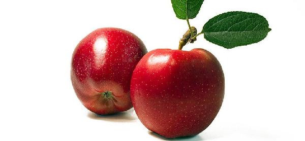 does apple cider vinegar help hypothyroidism